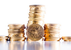 Fem dollar guld- mynt Fotografering för Bildbyråer