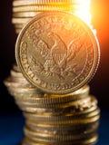 Fem dollar guld- myntar Arkivfoto