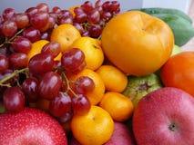 Fem färgade frukter Arkivbild