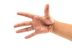 Fem finger och handräkningen numrerar fem på isolerad vit bakgrund Arkivbild
