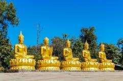 Fem guld- Buddha med olika mudras i rad Royaltyfri Bild