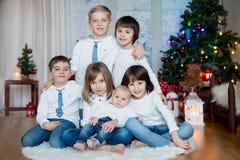 Fem gulliga barn, bröder, syster, syskon och vänner, havi arkivfoto