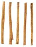 Fem kanelbruna sticks som isoleras på white Fotografering för Bildbyråer