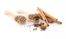 fem-krydda ingrediens royaltyfria foton