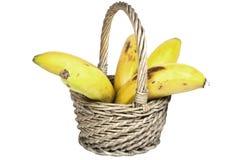 Fem mogna bananer i en vävd vide- korg Fotografering för Bildbyråer