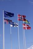 Fem nordiska flaggor på flaggstång med EU-flaggan Danmark, Sverige, Norge, Finland, Island och europeisk union Royaltyfri Bild