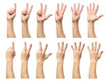 Fem räknande manhänder som isoleras på vit Arkivfoto
