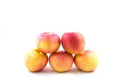 Fem röda äpplen Fotografering för Bildbyråer