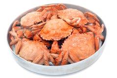 Fem röda kokta krabbor Royaltyfri Fotografi