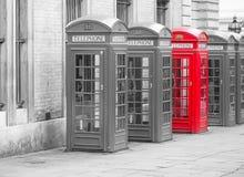 Fem röda London telefonaskar i svartvitt med ett rött telefonbås Royaltyfria Bilder