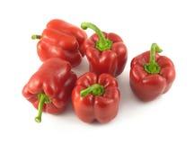 Fem röda spanska peppar som tätt isoleras upp Arkivbild