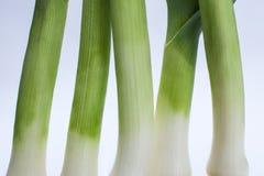 Fem salladslökar Arkivfoto