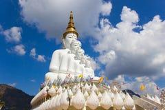 Fem sittande buddha statyer på Wat Pha Sorn Kaew Arkivbild