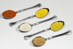 Fem skedar som innehåller olika typer av kryddapulver arkivbild