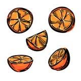 Fem stiliserade stycken av apelsinen Arkivbilder