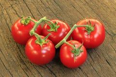 fem tomater Royaltyfri Fotografi