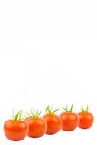 Fem tomater 2 Royaltyfri Fotografi