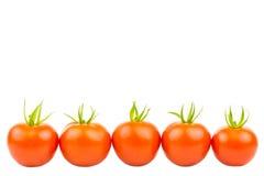 Fem tomater 5 Royaltyfri Foto