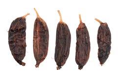 Fem torkade bananer Royaltyfria Foton