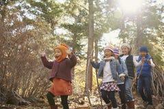 Fem unga barn som tillsammans spelar i en skog, sikt för låg vinkel arkivfoto