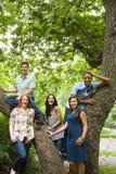 Fem unga vänner runt om ett träd royaltyfria foton
