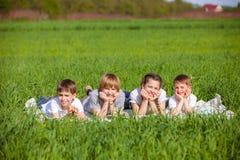 Fem vänner som ligger på gräs Arkivfoto