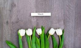 Fem vita tulpan vid en ferie av våren Royaltyfri Foto