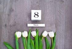 Fem vita tulpan vid en ferie av våren Royaltyfri Bild