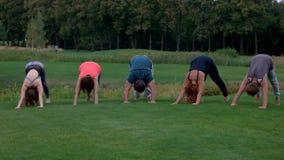 Fem vuxna personer som står i yogaposition på grönt gräs lager videofilmer