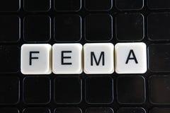 Fema-Titeltext-Wortkreuzworträtsel Alphabetbuchstabe blockiert Spielbeschaffenheitshintergrund Weiße alphabetische Buchstaben auf Lizenzfreie Stockfotos