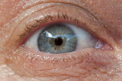 Femail eye Stock Photography