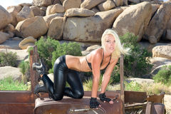 Femail model in desert Royalty Free Stock Photo
