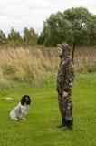 Femail sulla caccia. Fotografie Stock Libere da Diritti