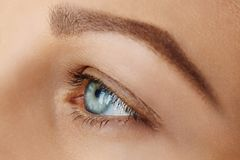 Femal hace frente con el ojo azul sin maquillaje imagenes de archivo