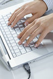 Femal hands typing Stock Images