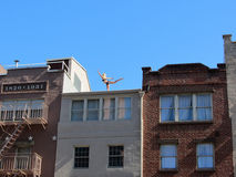 Female practicing yoga in New York City. Female practicing yoga on the roof of a building in Greenwich Village, Manhattan, New York City royalty free stock photo