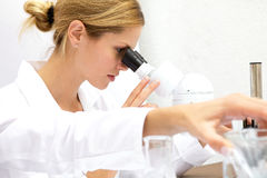 Femal Scientist Working Together Stock Image