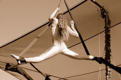 Female Aerial Acrobat Doing Splits. Female Aerial Acrobat Performing a Routine at a Renaissance Celtic Festival Fa ire Stock Images