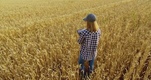 Female agronomist farmer with tablet in golden wheat field