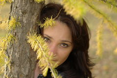 Free Female And Fir-tree Royalty Free Stock Photos - 16837858