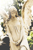 Female angel tombstone stock images