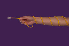 Female arm with coiled ethernet cable Stock Photos