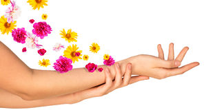 Female arms with colorful flowers Royalty Free Stock Photos
