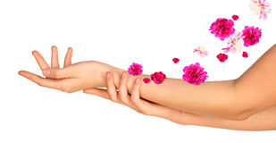 Female arms with pink flowers Stock Image