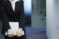 Female asian business executive Royalty Free Stock Images