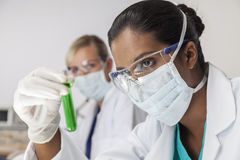 Female Asian Scientist & Test Tube In Laboratory Royalty Free Stock Photography