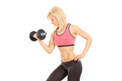 Female athlete exercising with a barbell Royalty Free Stock Image