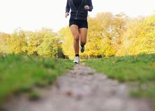 Female athlete jogging in park Stock Photo