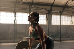 Female athlete lifting weights in gym. Muscular female athlete lifting weights at health club. Fitness woman doing weightlifting workout at gym Royalty Free Stock Images