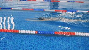 A female swimmer moves underwater in a slow motion. A female athlete swims underwater for several strokes in a slow motion stock video